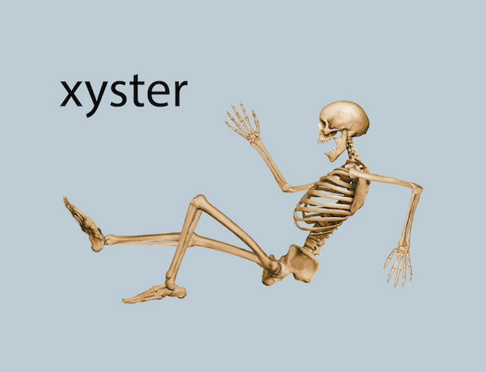 xyster